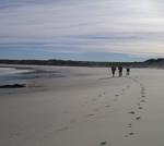 Namaqua Silver Sands Hiking Trail